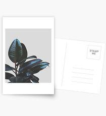 Botanical Art V4 #redbubble #tech #style #fashion Postcards