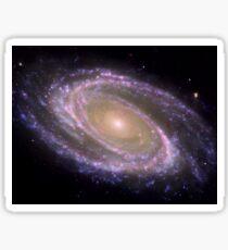 Spiral galaxy Messier 81. Sticker