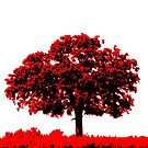 Lone Oak - Black White And Red Series by Betty Northcutt