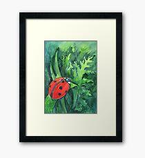 Red cute ladybird sitting on a leaf of grass Framed Print