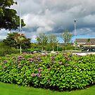 Summer Storm versammelt sich über Stornoway von BlueMoonRose