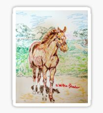 Baby Secretariat Sticker