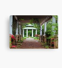Walk Under The Arbor Canvas Print