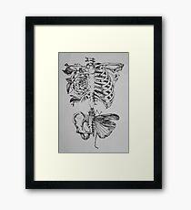 Soft anatomy Framed Print