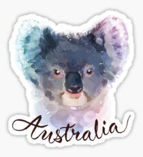 Australian Koala Sticker