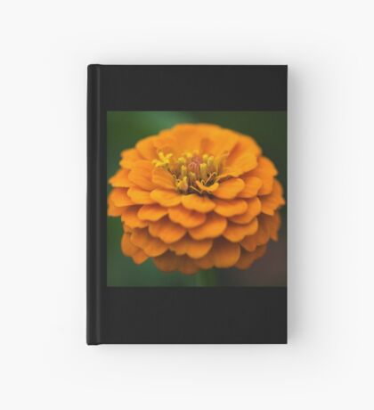 She wears a frilly frock in the summer Hardcover Journal