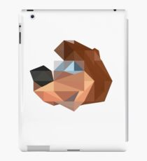 Banjo Polygon iPad Case/Skin