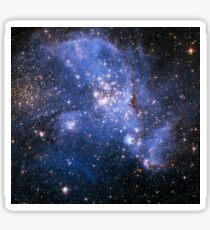 The Small Magellanic Cloud Sticker