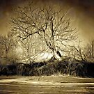 A digital painting in an old print style of a Romanian Winter scene by Dennis Melling