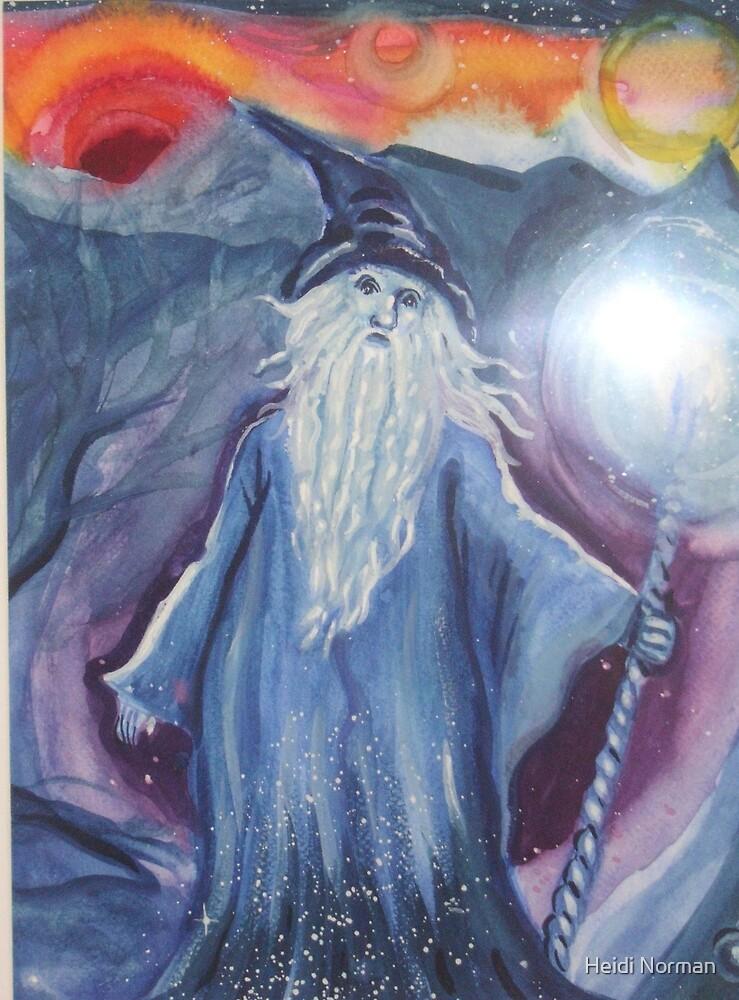 Merlin by Heidi Norman