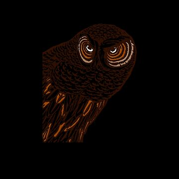 Brown Owl by venitakidwai1