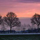 Sunset in Winter by ienemien