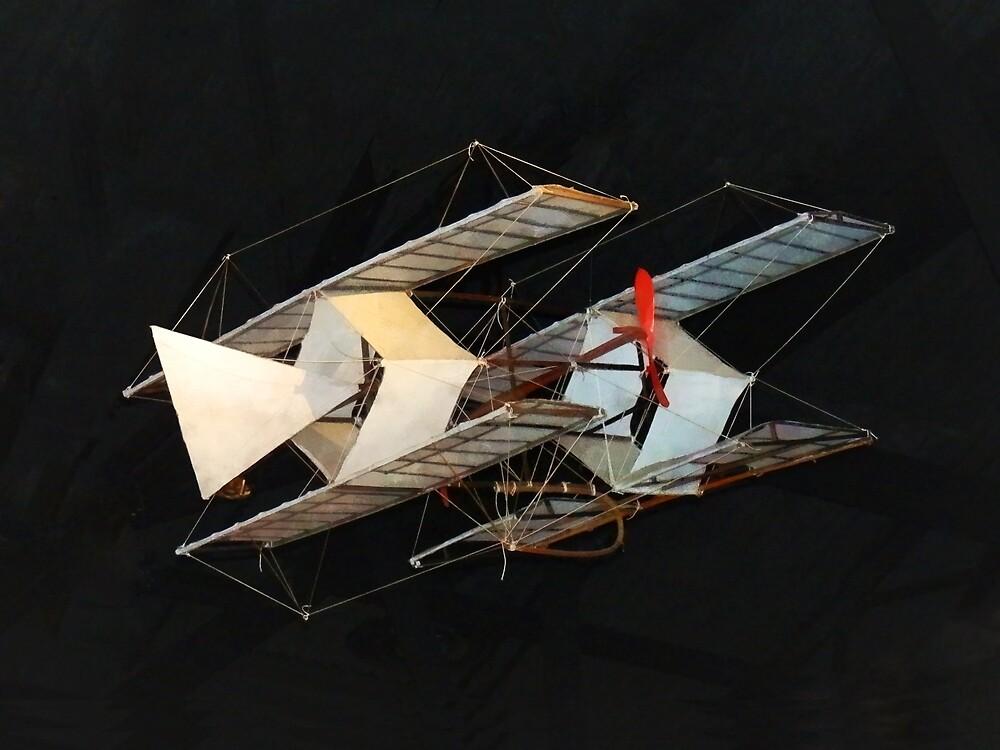 The Timmons Kite by Susan Savad