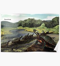 Painted Turtle - WITH Text Poster