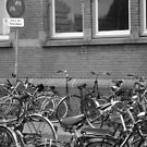 Bicycles at the Station by Sarah Potts