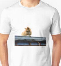 Kitty Crouch T-Shirt