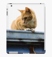 Kitty Crouch iPad Case/Skin