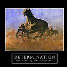 Determination by Asia Barsoski
