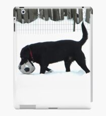 Snow Games iPad Case/Skin