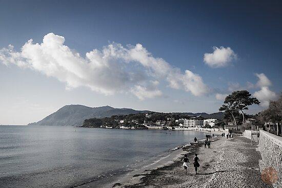 Beach Landscape Southern France by jpvalery
