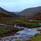 Langden Brook by mikebov
