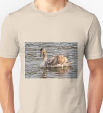 Young Mute Swan At Exeter Quays Unisex T-Shirt