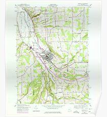 New York NY Dansville 137961 1942 24000 Poster