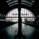 Frankfurt Hauptbahnhof by Richard McKenzie