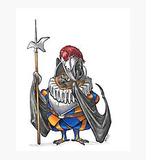 Swiss Guard Bat Photographic Print