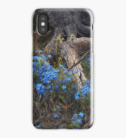 Lechenaultia and Tree iPhone Case