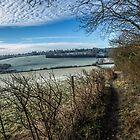 Looking across the Asheridge Valley on a frosty morning, Buckinghamshire by Robertsphotos