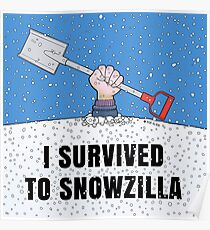 I SURVIVED TO SNOWZILLA Poster
