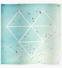 Free Birds in Blue Sky Poster