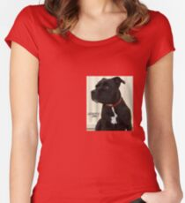Staffy Dog Women's Fitted Scoop T-Shirt