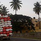 the coconut man by queenenigma
