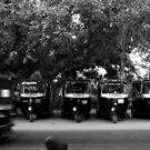 three wheelers by queenenigma