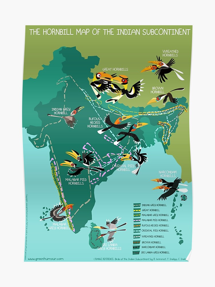 The Hornbill Map of the Indian Subcontinent | Poster on pune on world map, europe on world map, china on world map, near east on world map, middle east on world map, amritsar on world map, arabian peninsula on world map, jammu and kashmir on world map, the caribbean on world map, korean peninsula on world map, great britain on world map, yangtze river on world map, shang empire on world map, tamluk on world map, scandinavia on world map, benelux on world map, sahara on world map, sundarbans on world map, asian on world map, deccan peninsula on world map,