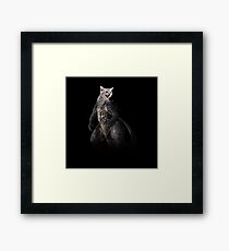 Kittysaurus Framed Print