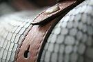Blue leather II by LynnEngland