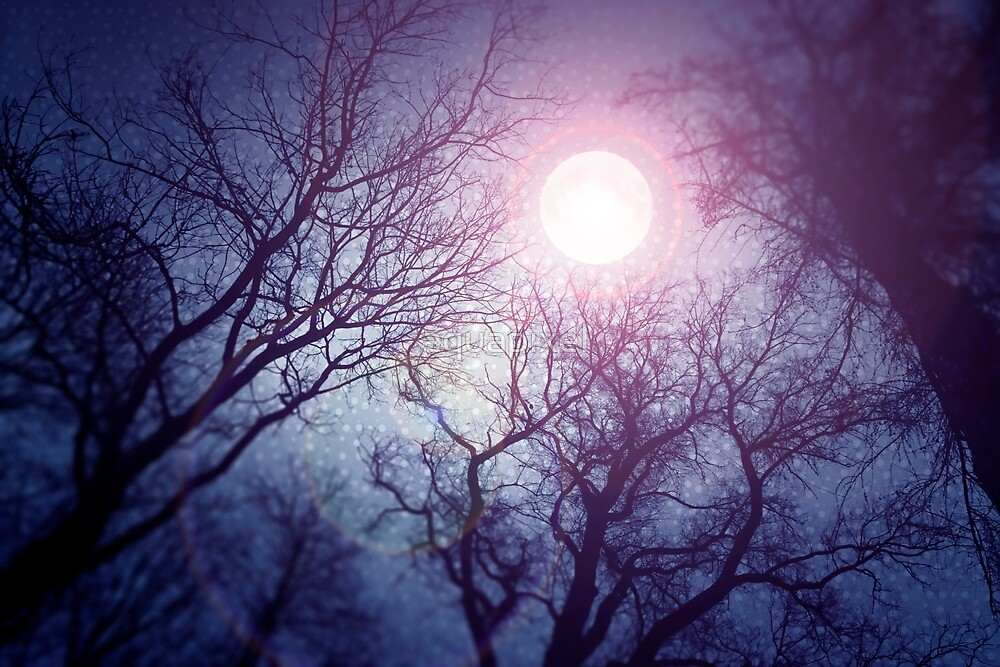 Dark enchanted photo of a full moon in the trees branches background. Blue and violet fairy-tale colors by aquapixel