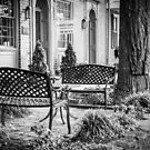 Augusta KY Benches B&W by mcstory