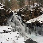 Winter's Deep Freeze Engulfs Ozone Falls by Gene Walls