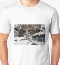 Winter's Deep Freeze Engulfs Ozone Falls Unisex T-Shirt
