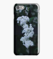 Beauty In The Gardens  iPhone Case/Skin