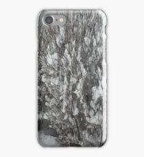 Winter Bush iPhone Case/Skin