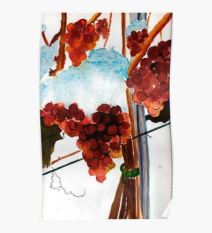 Ice Wine Poster