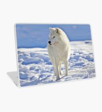 Arctic Wolf (Click and see large!) Laptop Skin