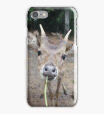 Cute Deer - Eating Vegetables iPhone Case/Skin