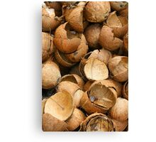 Pile of Coconut Shells Canvas Print