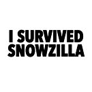 I Survived Snowzilla by typeo
